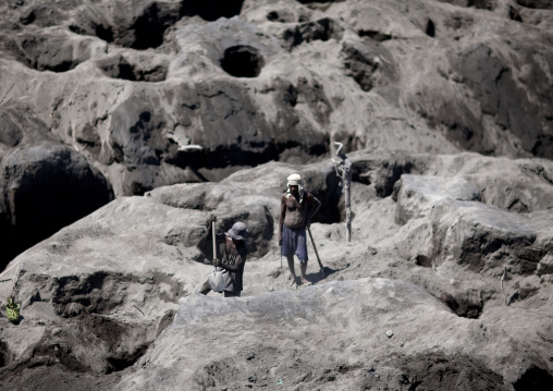 Men digging to find megapode birds eggs in tavurvur volcano ashes, East New Britain Province, Rabaul, Papua New Guinea