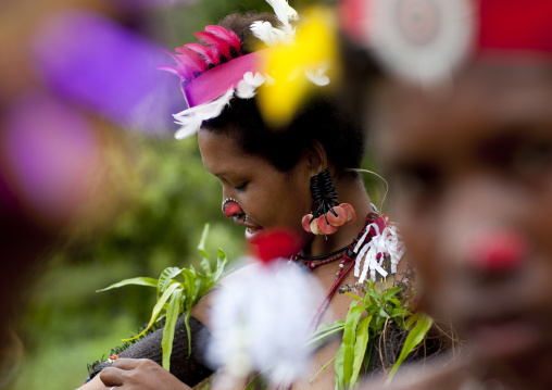 Tribal women with traditional clothing during a ceremony, Milne Bay Province, Trobriand Island, Papua New Guinea
