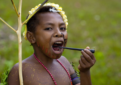 Boy eating betel nut, Milne Bay Province, Trobriand Island, Papua New Guinea