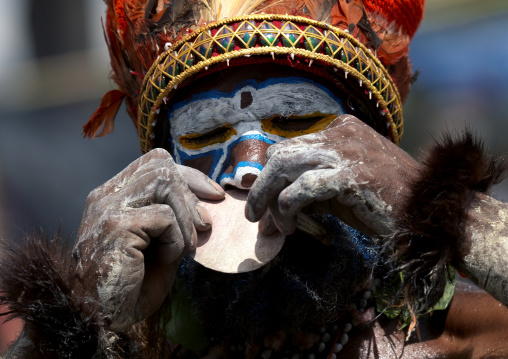 Highlander warrior putting a nose ring decoration during a sing sing, Western Highlands Province, Mount Hagen, Papua New Guinea