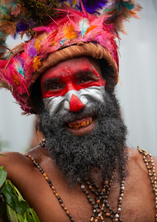 Highlander warrior with traditional makeup during a sing-sing, Western Highlands Province, Mount Hagen, Papua New Guinea