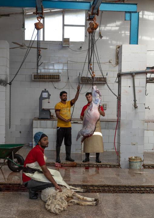 Butchers working at slaughterhouse, Najran Province, Najran, Saudi Arabia