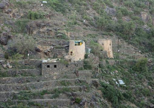 Terraces in the mountains, Fifa Mountains, Al-Sarawat, Saudi Arabia