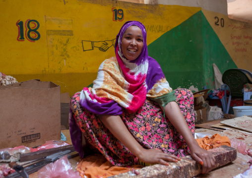 A woman sitting on the floor selling meat, Woqooyi galbeed region, Hargeisa, Somaliland