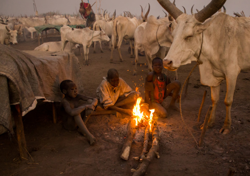 Mundari tribe boys making a campfire with dried cow dungs to repel flies and mosquitoes, Central Equatoria, Terekeka, South Sudan