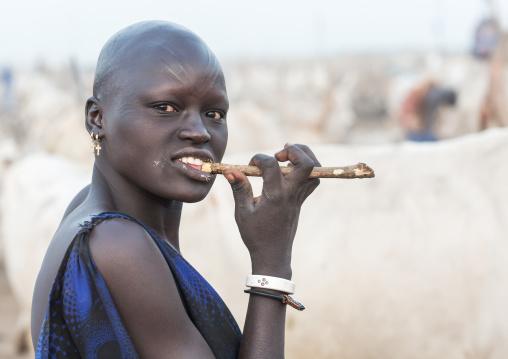Mundari tribe woman using a wooden toothbrush, Central Equatoria, Terekeka, South Sudan