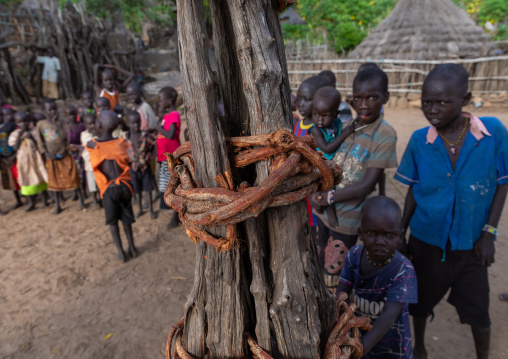 Children around a generation pole erected during initiation ceremonies in Lotuko tribe, Central Equatoria, Illeu, South Sudan