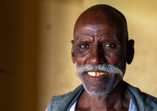 Portrait of a sudanese man with big moustache, Nubia, Old Dongola, Sudan