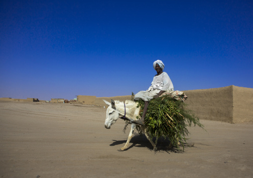 Sudan, Northern Province, Delgo, sudanese man riding a donkey