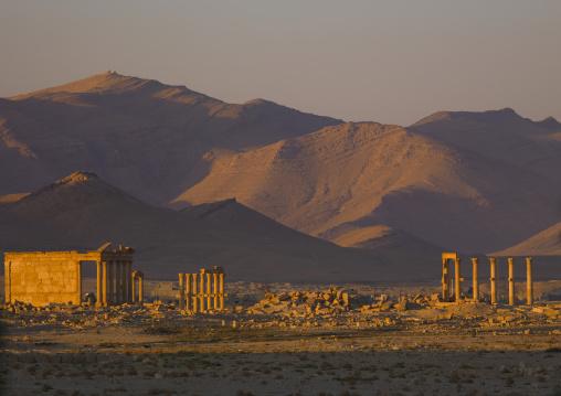 The Ancient Roman city of Palmyra, Syria