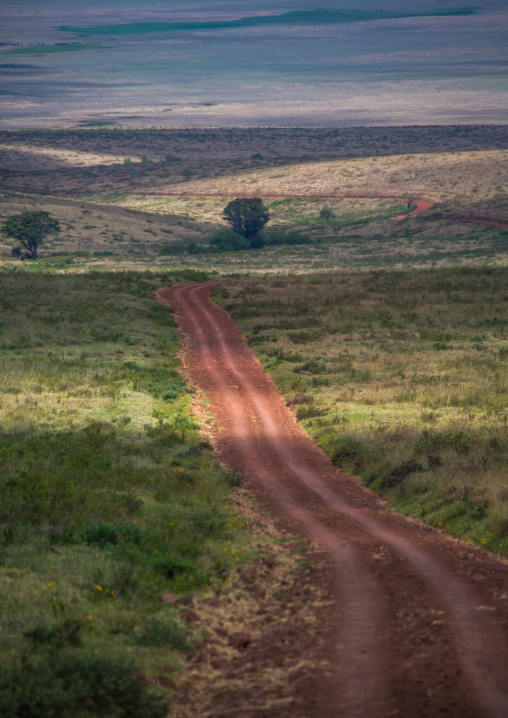 Tanzania, Arusha Region, Ngorongoro Conservation Area, a dirt track dissecting a vast short grass savannah plain surrounded by a volcano caldera wall