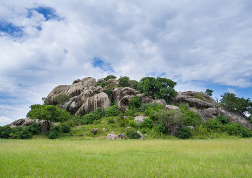 Tanzania, Mara, Serengeti National Park, kopje rock formation