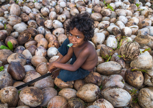Child boy sitting in the middle of coconuts in a factory, Shefa Province, Efate island, Vanuatu