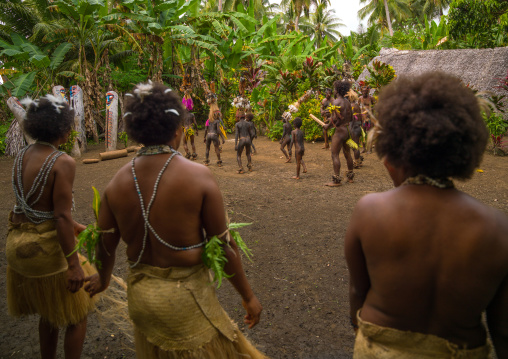 Small Nambas tribesmen covered with palm leaves dancing in front of slit gong drums during the palm tree dance, Malekula island, Gortiengser, Vanuatu