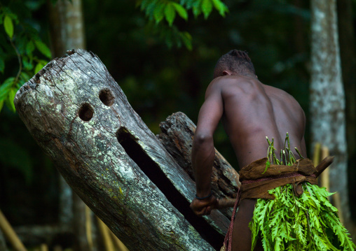 Big Nambas tribesman beating a slit drum during a ceremony, Malampa Province, Malekula Island, Vanuatu