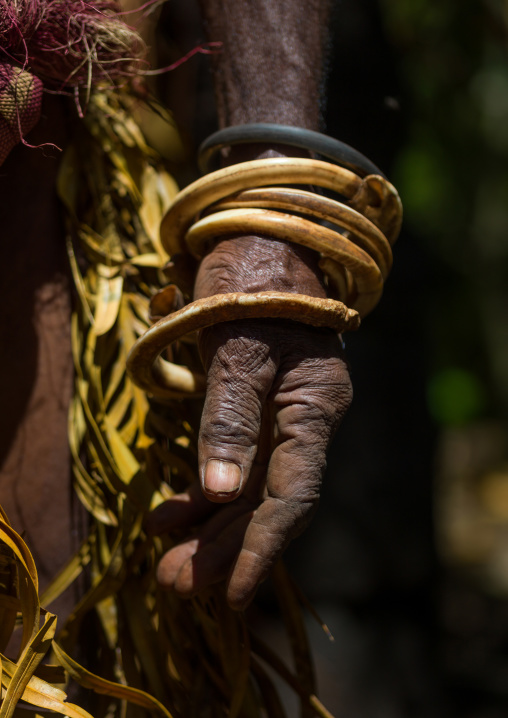 Circular pig tusks used as bracelets by a Ni-Vanuatu man, Ambrym island, Fanla, Vanuatu