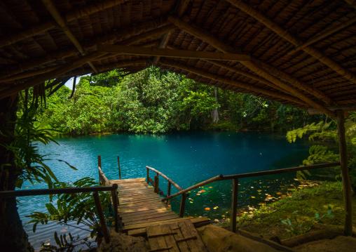 Matevulu blue hole, Sanma Province, Espiritu Santo, Vanuatu
