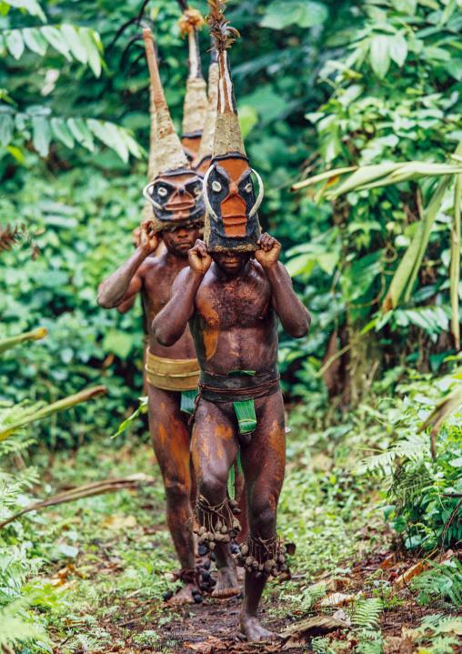 Tribesmen dancing in the jungle with helmet masks for a circumcision ceremony, Malampa province, Malekula island, Vanuatu