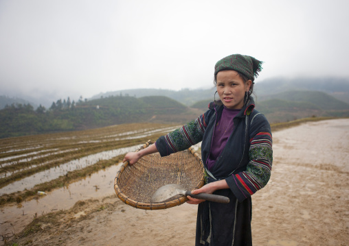 Black hmong woman showing the rice she picked up, Sapa, Vietnam