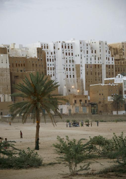 Palm Trees, Playground And White Skycrapers In Shibam, Yemen