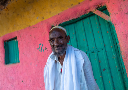 Portrait of an old afar tribe man in front of a pink house, Afar Region, Afambo, Ethiopia