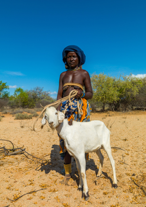 Mucubal tribe woman going to market with a goat, Namibe Province, Virei, Angola