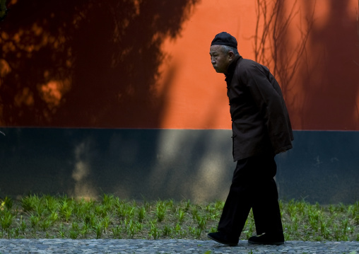 Old Chinese Man Walking, Beijing China