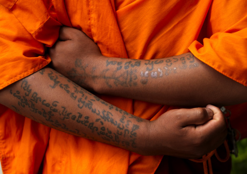Monk With Tatoos On Arms, Menglun, Yunnan Province, China