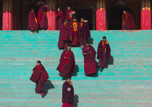 Tibetan monks of the gelug order or yellow hat sect on the stairs in front of the assembly hall in Bongya monastery, Qinghai province, Mosele, China