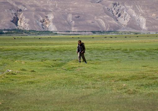 Boy collcting yak dungs to make fire, Badakhshan province, Qazi deh, Afghanistan