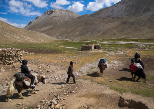 Treck in the pamir mountains with yaks, Big pamir, Wakhan, Afghanistan