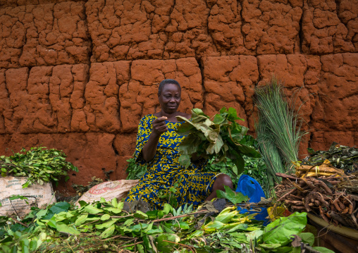 Benin, West Africa, Adjara, herbal market seller