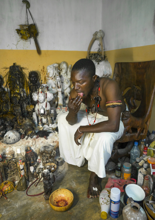 Benin, West Africa, Bonhicon, kagbanon bebe voodoo priest licking some oil during a ceremony