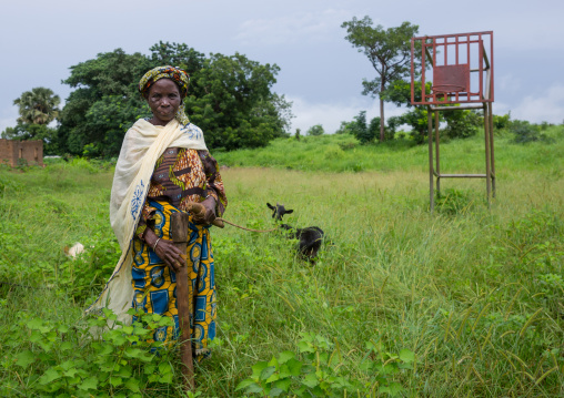 Benin, West Africa, Taneka-Koko, woman with a goat on a basket field covered with high grass