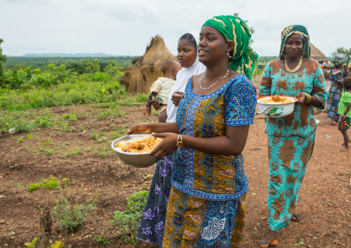 Benin, West Africa, Taneka-Koko, fulani peul tribe women bringing food for a wedding