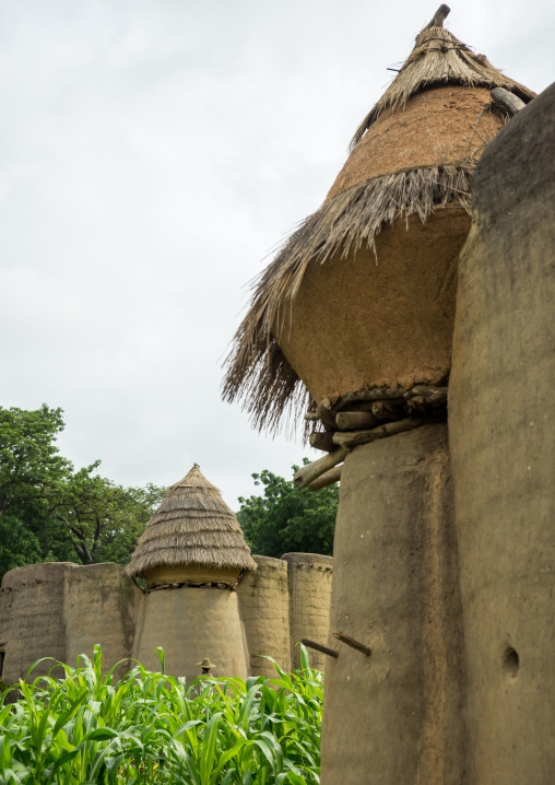 Togo, West Africa, Nadoba, traditional tata somba houses with thatched roofs and granaries