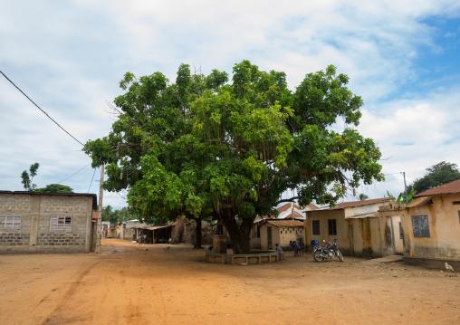 Benin, West Africa, Ouidah, arbre du retour on the slave trail