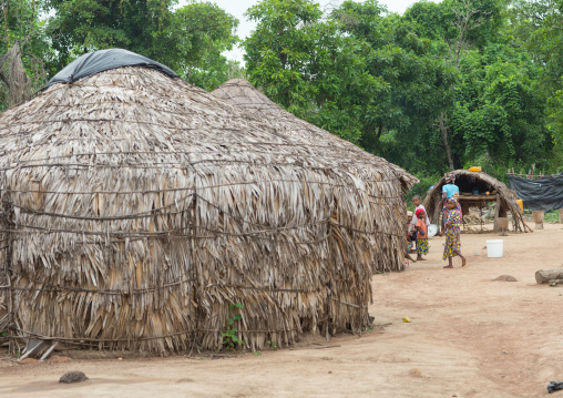 Benin, West Africa, Savalou, traditional peul houses made of dried leaves