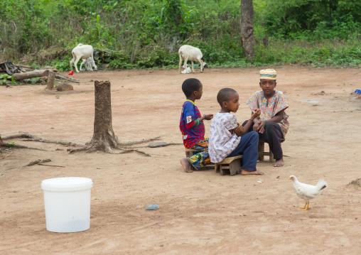 Benin, West Africa, Savalou, fulani peul tribe boys