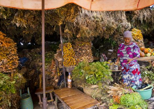 Benin, West Africa, Cotonou, herbs used for traditional medicine in dantokpa market