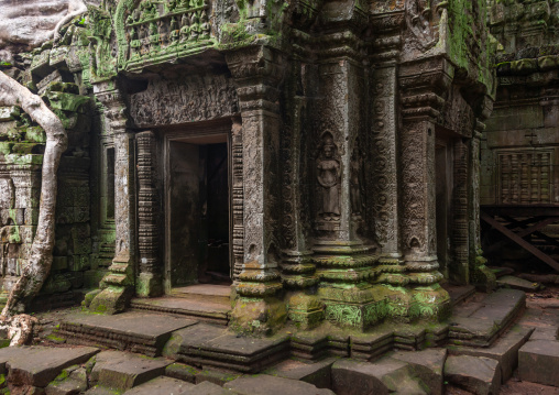 Old ruins of a temple in Angkor wat, Siem Reap Province, Angkor, Cambodia