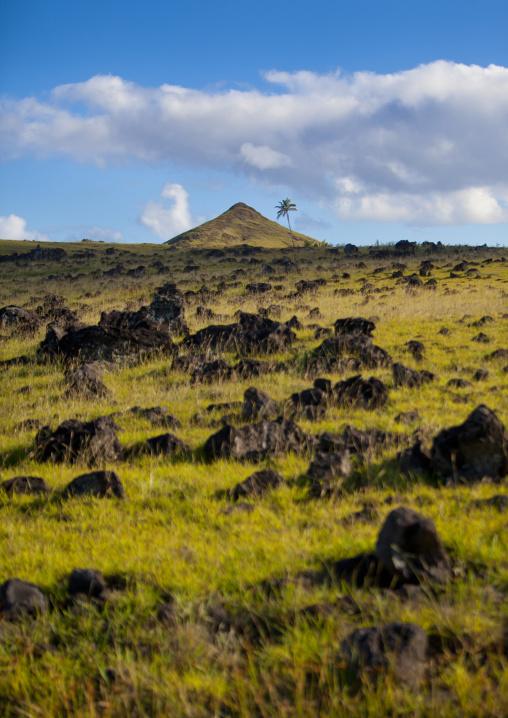 Easter Island Landscape, Chile