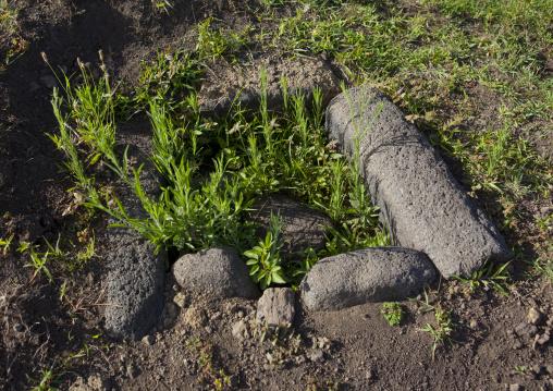Earth Oven In Rano Raraku, Easter Island, Chile