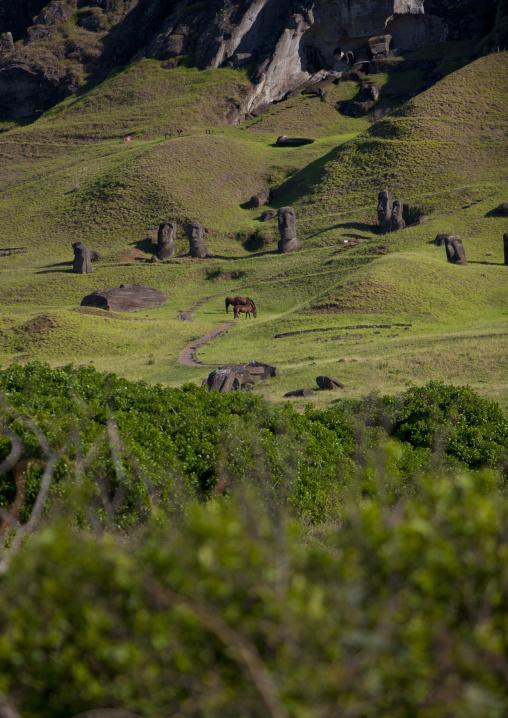 Moais In Rano Raraku, Easter Island, Chile
