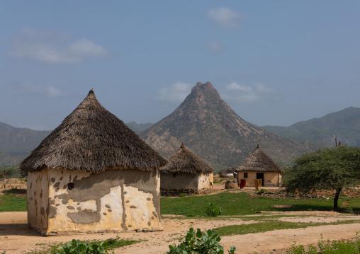 Huts in a village, Semien-Keih-Bahri, Keren, Eritrea