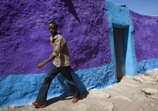 Man Passing By A Purple Painted House, Harar, Ethiopia