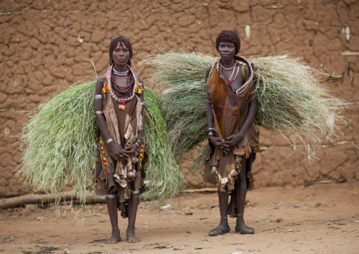Portrait Of Couple Hamer Beautiful Women Carrying Load Of Straw Posing In Front Of Clay House Omo Valley Ethiopia