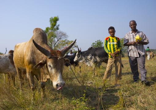Nuer Tribe Livestock And Catlle Market, Gambela, Ethiopia