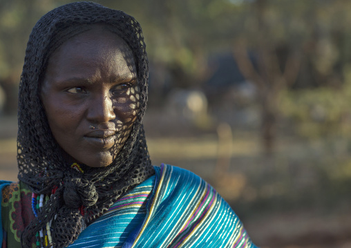 Borana Tribe Woman, Yabelo, Ethiopia