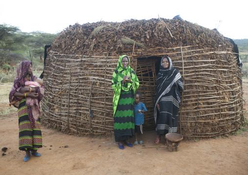Borana Tribe Women In Front Of A Hut, Yabelo, Ethiopia